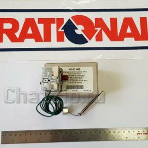 Аварийный термостат рабочей камеры 365°C SCC, CM 61-202 начиная с 04/2004 40.01.482S